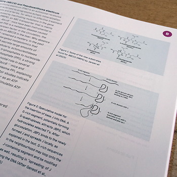 NKI_wetensch_detail_01_square-_-350x350_100